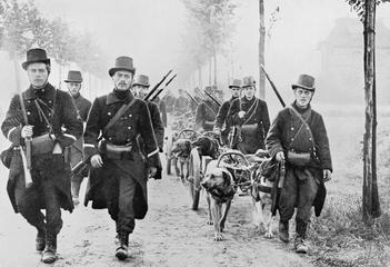 Belgian troops with dog-drawn machine-gun carts, August 1914