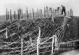 Barbed wire began to cover the WW1 battlefields, date uncertain
