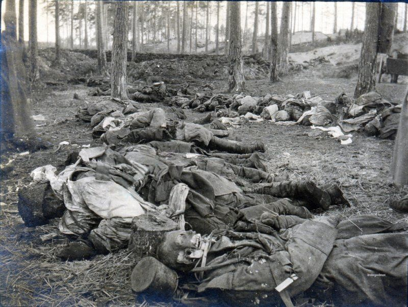 Bodies of the dead, Eastern Front, World War One, date uncertain