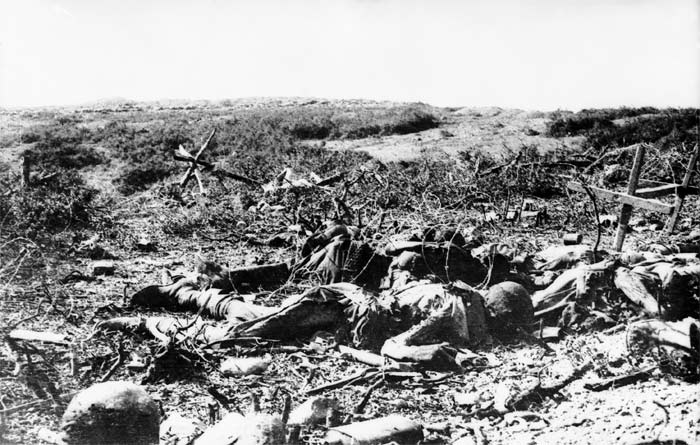 The dead at Krithia on the Gallipoli peninsula, spring 1915.
