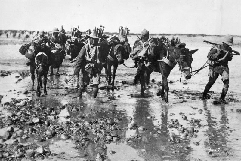 British troops in Mesopotamia, 1916