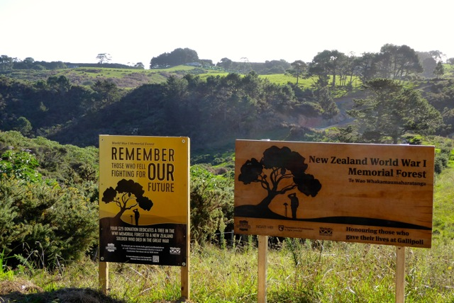 Signs tell of the planting of 18,166 trees at the World War I Memorial Forest on New Zealand's Coromandel Peninsula