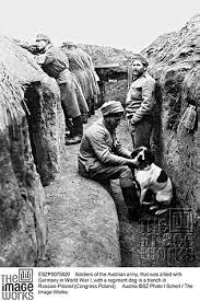 Austrian soldiers dug in on the Eastern Front.