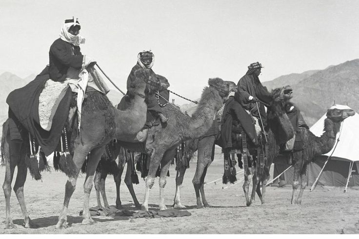 Troops of the Arab Revolt, date uncertain
