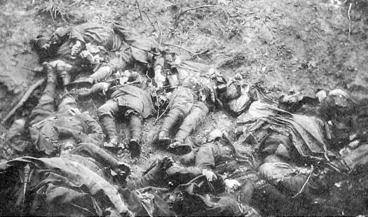 The Somme dead, July 1916.