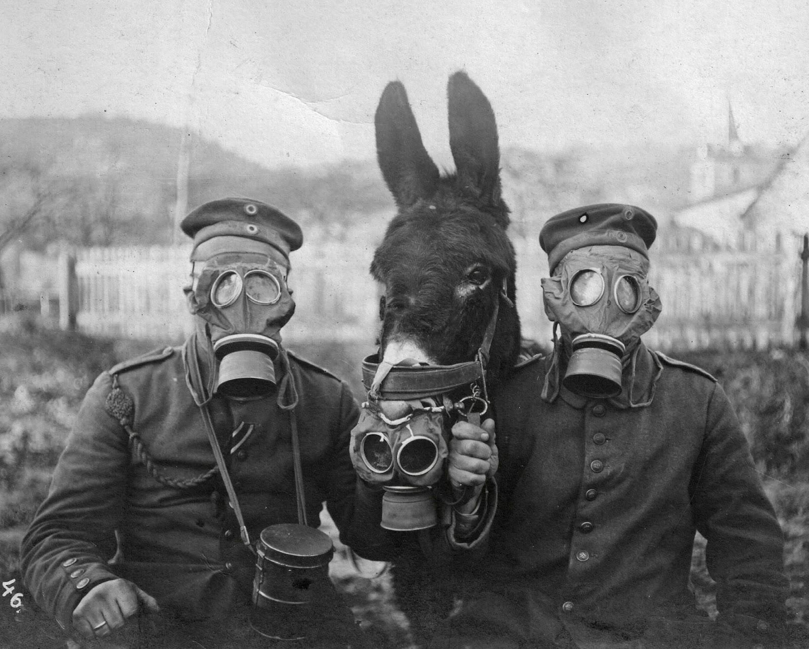 Extraordinary images from the Great War.